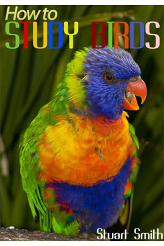 How to Study Birds