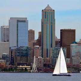 Seattle Skyline  by Paul Turner - City,  Street & Park  Skylines ( seattle ferris wheel )