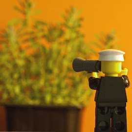 grow by Kevin Towler - Artistic Objects Toys ( plant, figure, toy, still life, lego )
