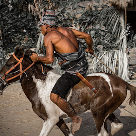 Passola by Alexandre Ribeiro Dos Santos - News & Events Entertainment ( passola, sumba, indonesia, horse, brown, race, man )