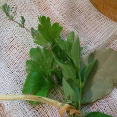 Fresh Bouquet Garni by Toula Patsalis