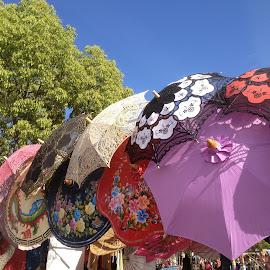 Parasols on Parade by Gena Estrin - Artistic Objects Clothing & Accessories ( colorful, umbrella, parasol, flowers, mood factory, vibrant, happiness, January, moods, emotions, inspiration )