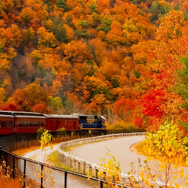 Fall Train by GPictoria -Gopu's Photography - Landscapes Travel ( nature, train, beauty, fall train, fall color, fall, color, colorful )
