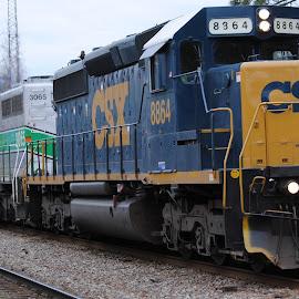 Southbound Freight by Prentiss Findlay - Transportation Trains ( railfreight, railroad, train, freighttrain, trainengine )