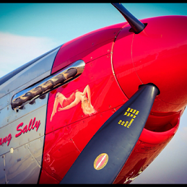 Mustang Sally by Jacobus Opperman - Transportation Airplanes (  )