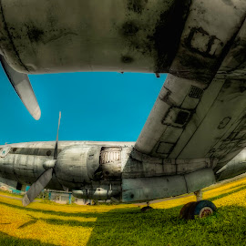 ' C O N _ A I R ' by Rey Natalio - Transportation Airplanes