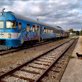 by Josip Kopčić - Transportation Trains