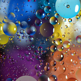 Floating Ellipses by Janet Herman - Abstract Macro ( water, abstract, oil and water, macro, colors, ellipses, floating, reflections, oil )