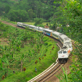 CURVING by Husni Mubarok - Transportation Trains