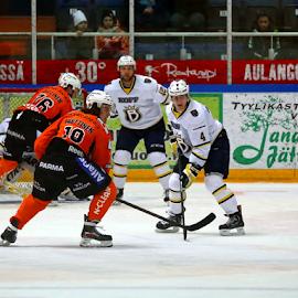 Ice hockey, HPK-Blues by Teija Kukkonen - Sports & Fitness Ice hockey