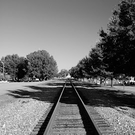 Converging Lines by Tony Moore - Transportation Railway Tracks ( black and white, railroad, bw, track, converging lines, tracks, converge, landscape,  )