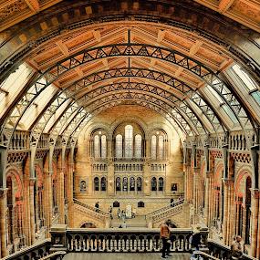 NHM 4 by Gabriel Tocu - Buildings & Architecture Public & Historical ( building, museum, historical, architecture, public,  )