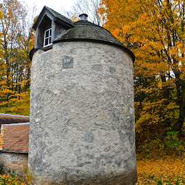 Silo Built In 1915 by Kathy Suttles - Artistic Objects Antiques ( orange, old, window, trees, stone, 1915, silo )