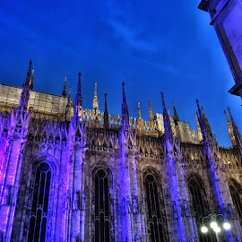 Purple Cathedral  by Jose Figueiredo - Buildings & Architecture Statues & Monuments ( purple, purple lighting, cathedral, creativity, lighting, art, artistic, mood factory, lights, color, fun )