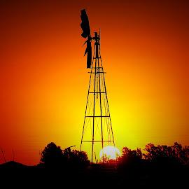 by Coena le Roux - Landscapes Sunsets & Sunrises (  )
