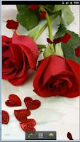 Screenshot of Romantic Love Live Wallpaper