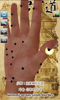 Screenshot of 3D Chinese Hand Acupuncture