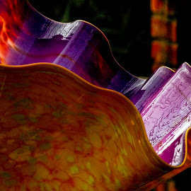 by Sadiebeck  Pender - Artistic Objects Glass ( phipps conservatory, chilluly )