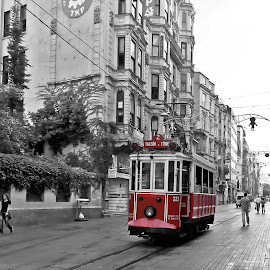 Tram by Angelo Pereira - Transportation Trains ( selective color, pwc )