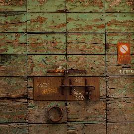 Heavy Door by Brennan Cassidy - Buildings & Architecture Other Exteriors ( doors, old, wood, door, paint, heavy,  )