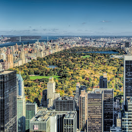 Above Central Park by Ron Phillips - City,  Street & Park  City Parks ( canon, hdr, parks, cityscape, new york, central park )