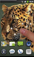 Screenshot of Leopard Sounds live wallpaper