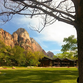 park by Dipali S - Instagram & Mobile Instagram ( mountains, national, landscape, zion )
