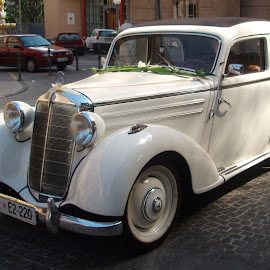 Old style wedding by Mario Horvat - Wedding Other ( car, old timer, white car, mercedes )