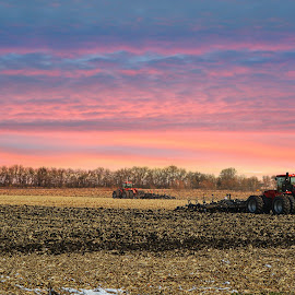 In the fields by Tricia Scott - Landscapes Prairies, Meadows & Fields ( sunset, midwest, fall, harvest, evening, tractor )