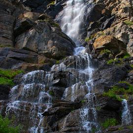 Falls by Samantha Marshik - Nature Up Close Water