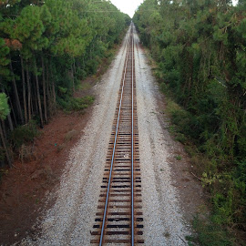 Take the long way home! by Melissa Durapau Gregory - Travel Locations Railway