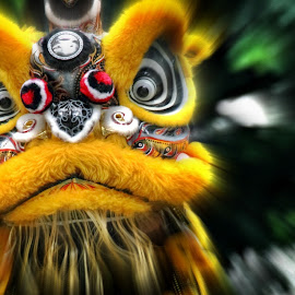 SURPRISED! by Andy Teoh - News & Events Entertainment ( lion dance, eos dslr, zoomeffect, event photography, andyteoh photography )