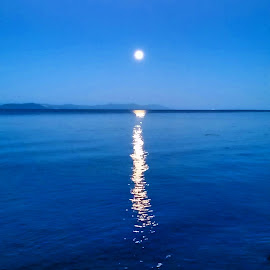 Supermoon by Jamie Wilson - Novices Only Landscapes ( reflection, moon, vancouver island, ocean, supermoon )