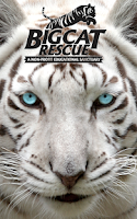 Screenshot of Big Cat Rescue