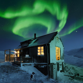 Arctic storm & lights in west Iceland by Kristján Karlsson - Buildings & Architecture Other Exteriors ( snow blizzard, night, dog, cabin aurora, storm, stormy, weather )