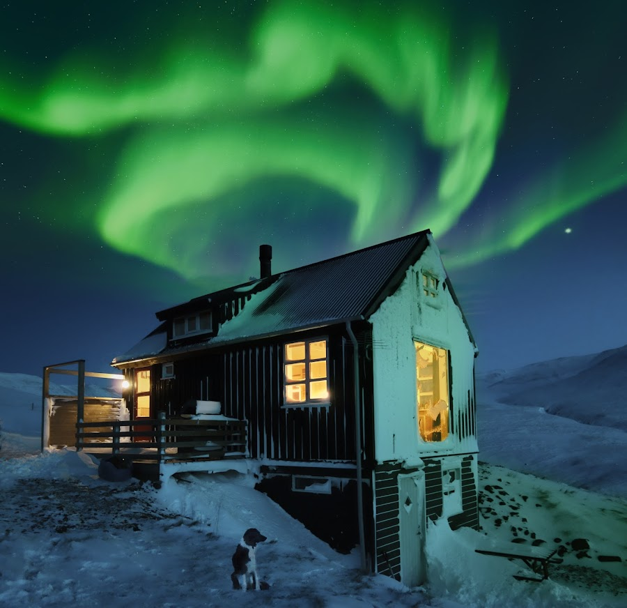 by Kristján Karlsson - Buildings & Architecture Other Exteriors ( stormy, snow blizzard, night, storm, cabin aurora, dog )