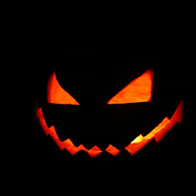 Jack O by Jill French - Public Holidays Halloween (  )
