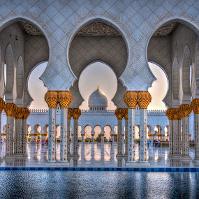 Grand Mosque by Darren Whiteley - Buildings & Architecture Places of Worship ( water, arch, mosque, uae, abu dhabi, worship,  )
