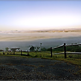 Clouding Of Consciousness by Catherine Melvin - Landscapes Prairies, Meadows & Fields ( heavy fog, thick, foggy morning, maine landscape photography, obscure )