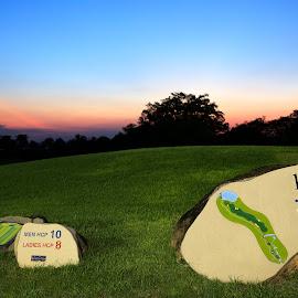 Golf hole 10 by Patrick Lim - Sports & Fitness Golf