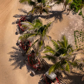 Exploring Cozumel by Christian Diboky - Transportation Other ( sand, green, mexico, cozumel, beach, palms, exlore, palm, buggy, red, top-shot, buggies, brown,  )