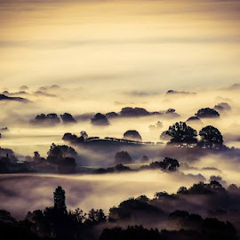 Clee Mist by Nick Jackson - Landscapes Mountains & Hills