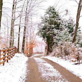Snow on country road by Brittany  Wright - Landscapes Weather ( snow, country road )
