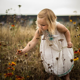 Picking  Flowers by Dale-Marie Van Ess-Boersema - Babies & Children Children Candids ( nautre, toddler, flowers, natural )