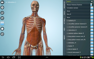 Screenshot of Anatomy 3D - Anatronica
