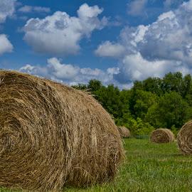 Boring Nebraska by Pete Bobb - Landscapes Prairies, Meadows & Fields ( clouds, hay, kearney, hay rolls, nebraska )
