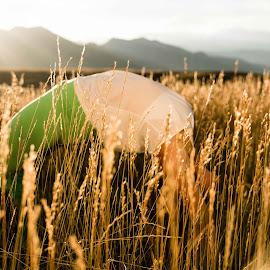 wheat wheel by Matthew Eaton - Sports & Fitness Fitness ( wheat, matthewbephotography, sunset, wheelpose, yoga, asana )
