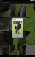 Screenshot of Kid Photo Puzzle