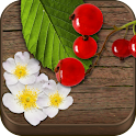 Wild Berries & Herbs PRO icon
