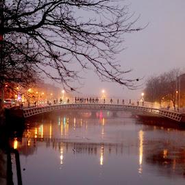 foggy eve in Dublin by Martys Photos - City,  Street & Park  Street Scenes ( ireland, dublin, street, martin j murphy photography, martin j murphy, ha'penny bridge )
